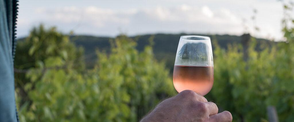 amazon copas de vino